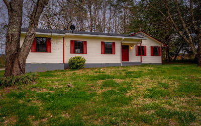 Marion County Single Family Home For Sale: 485 Dream Cir