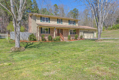 Ringgold Single Family Home Contingent: 241 Battleview Dr