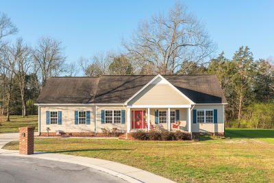 Chickamauga Single Family Home Contingent: 194 Glass Mill Pointe Dr
