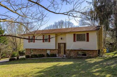 Rhea County Single Family Home For Sale: 165 Sierra Dr