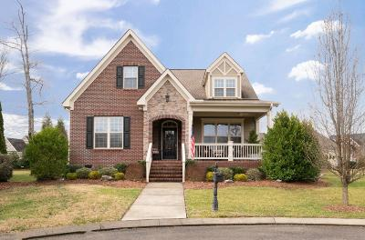 Ooltewah Single Family Home For Sale: 9563 Serendipity Cir