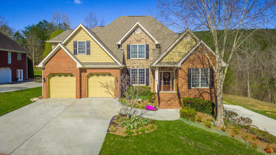 Soddy Daisy Single Family Home Contingent: 11197 Captains Cove Dr