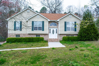 Ringgold Single Family Home For Sale: 216 Spring Meadows Dr