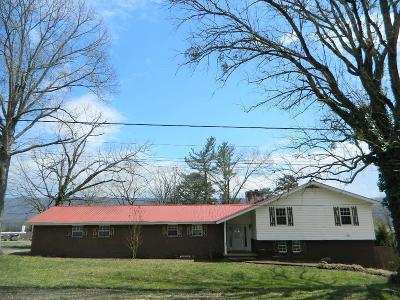 Trenton Single Family Home For Sale: 568 Poplar St
