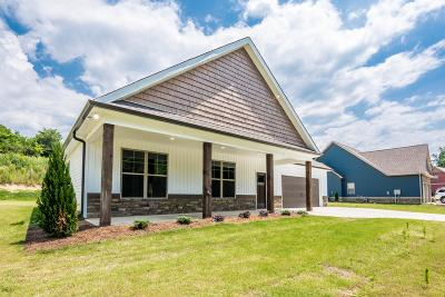 Ringgold Single Family Home For Sale: 1131 Baggett Rd
