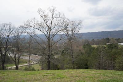 Dayton Single Family Home For Sale: 11824 Rhea County Hwy