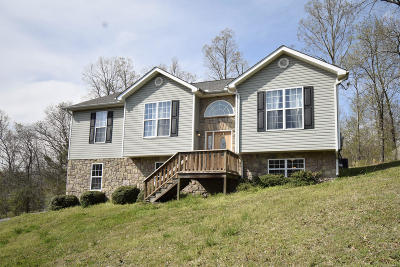 Ringgold Single Family Home For Sale: 222 Sutton Dr