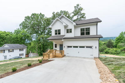 Chattanooga Single Family Home For Sale: 3603 Pickering Ave