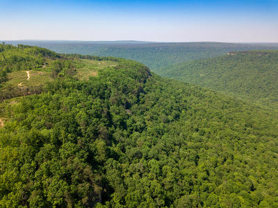 Residential Lots & Land For Sale: 24 East Of Pocket Creek #A24