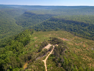 Residential Lots & Land For Sale: 25 East Of Pocket Creek #A25