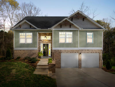 Ooltewah Single Family Home For Sale: 6735 White Tail Dr