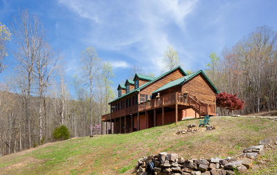 Marion County Single Family Home For Sale: 985 Nickajack Lndg