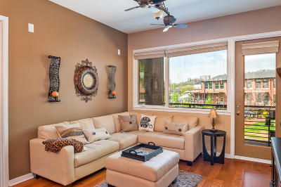 Chattanooga Condo For Sale: 200 Manufacturers Rd #Apt 237