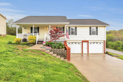 Single Family Home Contingent: 7418 Tanya Dr