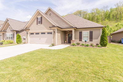 Hixson TN Single Family Home Contingent: $345,000