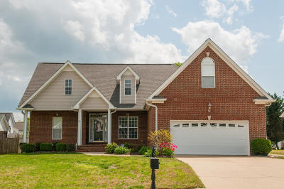Ringgold Single Family Home Contingent: 250 Rock Creek Tr