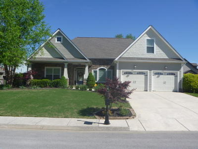 Ringgold Single Family Home For Sale: 133 Sawtooth Oak Tr