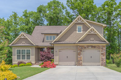 Chickamauga Single Family Home For Sale: 118 Stone Throw Ln