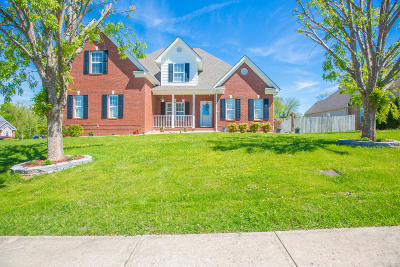 Chattanooga Single Family Home For Sale: 2192 Sargent Daly Dr