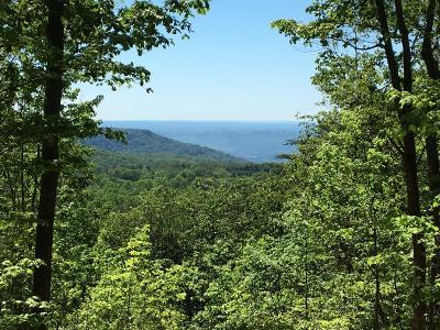 Rising Fawn Residential Lots & Land For Sale: 75 Shivas South