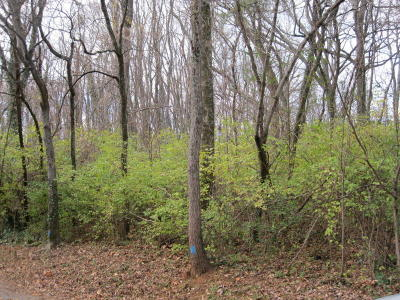 Chattanooga Residential Lots & Land For Sale: Battery Dr