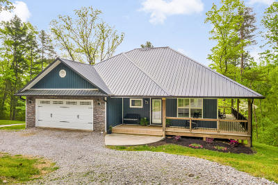 Cleveland Single Family Home For Sale: 393 SE Helms Ln