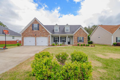 Ringgold Single Family Home For Sale: 588 Peachtree Cir