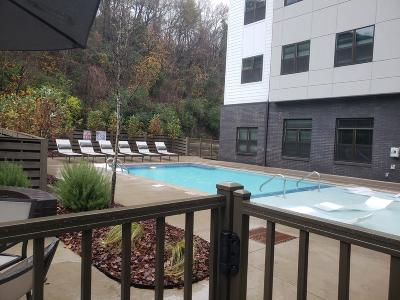 Chattanooga Condo Contingent: 782 Riverfrot Pkwy #206