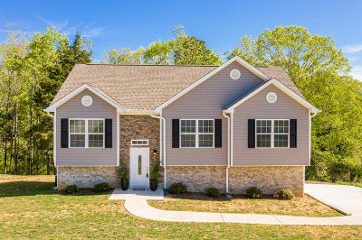 Ooltewah Single Family Home For Sale: 9742 Falcon Crest Dr