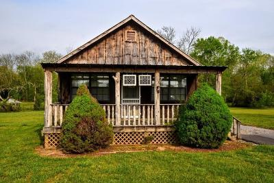 Rhea County Single Family Home For Sale: 141 Creek View Dr