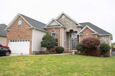 Ooltewah Single Family Home For Sale: 8638 Sunridge Dr