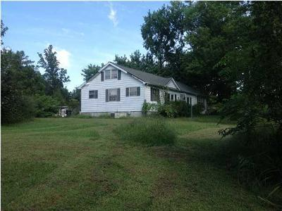 Ringgold Single Family Home For Sale: 5054 Highway 41