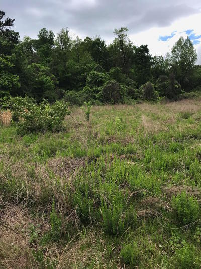 Chattanooga Residential Lots & Land For Sale: 508 Ashland Ter