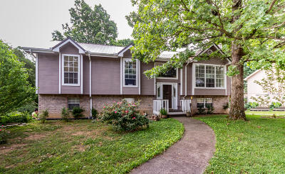 Ooltewah Single Family Home For Sale: 6910 Benwood Dr