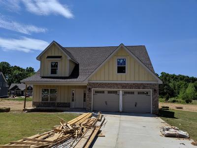 Ooltewah Single Family Home For Sale: 7511 Hollydale Ln