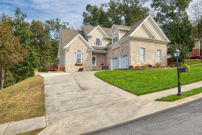 Ringgold Single Family Home For Sale: 103 Jalopy Ridge Dr