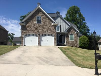 Ringgold Single Family Home For Sale: 129 Canyon Tr