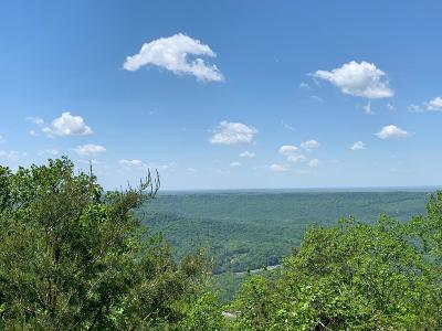 Rising Fawn Residential Lots & Land For Sale: Sunset Dr