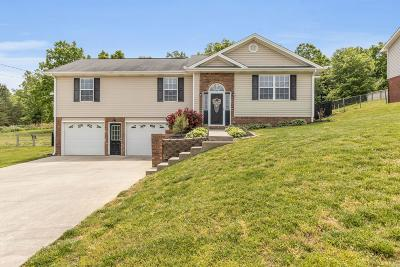 Single Family Home Contingent: 7467 Tanya Dr