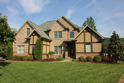 Hixson Single Family Home Contingent: 575 Blue Canyon Ln