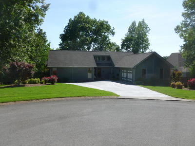 Ringgold Single Family Home For Sale: 89 Dogwood Tr