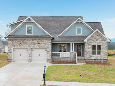 Chickamauga Single Family Home For Sale: 139 Fallen Leaf Dr #109