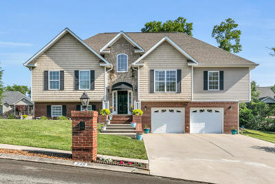 Ringgold Single Family Home For Sale: 249 Canary Cir