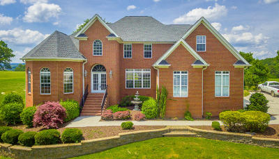Chattanooga Single Family Home For Sale: 7223 River Run Dr