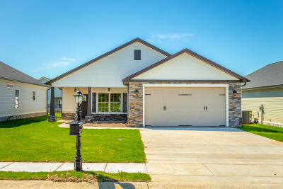 Rossville Single Family Home For Sale: 66 Browning Dr