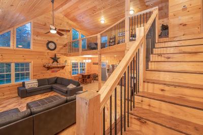 Rhea County Single Family Home For Sale: 445 Boofer Ln