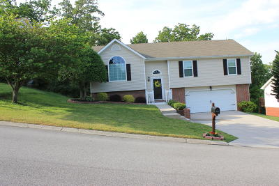 Single Family Home Contingent: 6443 White Tail Dr