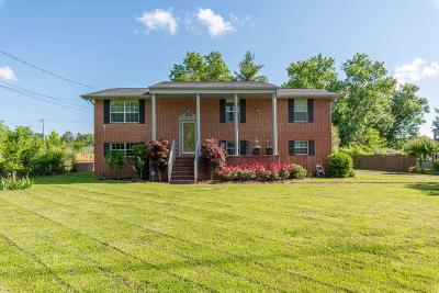Rossville Single Family Home For Sale: 80 Kimberly Ln