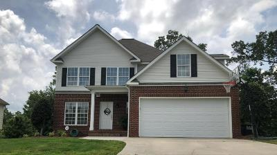 Ooltewah Single Family Home For Sale: 6145 Saab Dr