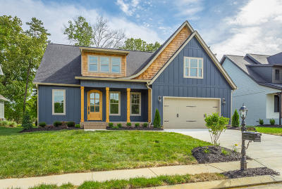 Ooltewah Single Family Home For Sale: 9290 White Ash Dr #2